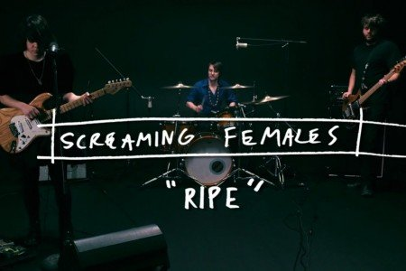 "image for article ""Ripe"" - Screaming Females Live at 94 Jewel [YouTube Video]"