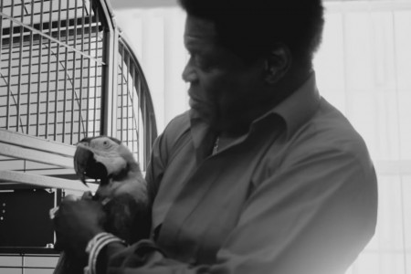 """Good To Be Back Home"" - Charles Bradley [YouTube Music Video]"