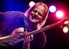 image for event Walter Trout