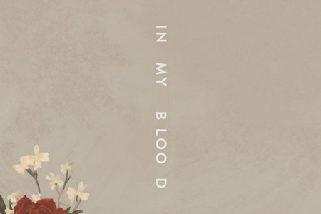 "image for article ""In My Blood"" - Shawn Mendes [YouTube Audio Single]"
