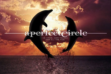 "image for article ""So Long, And Thanks For All The Fish"" - A Perfect Circle [YouTube Audio Single]"