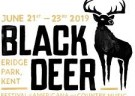 image for event Black Deer Festival 2019
