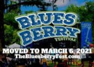image for event Bluesberry Music and Art Festival