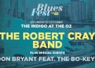 image for event BluesFest