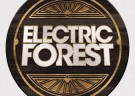 image for event Electric Forest Festival