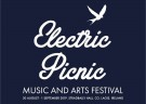 image for event Electric Picnic Music & Arts Festival