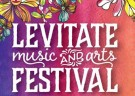 image for event Levitate Music Festival