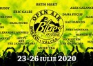image for event Open Air Blues Festival