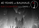 image for event 40 Years of Bauhaus: Peter Murphy & David J