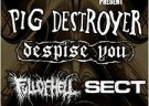 image for event Pig Destroyer, Despise You, and Full of Hell