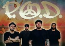 image for event P.O.D., Nonpoint, Islander, and Nine Shrines