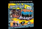 image for event Reel Big Fish, The Aquabats and Dog Party