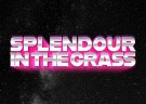 image for event Splendour in the Grass Music Festival