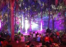 image for event Suwannee Roots Revival