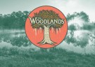 image for event The Woodlands Music & Arts Festival
