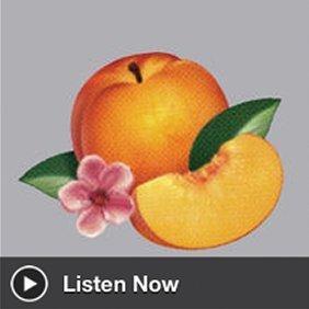 phoenix-bankrupt-free-album-stream-itunes