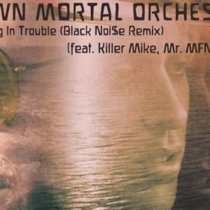 MORAL ORCHESTRA