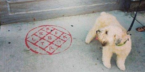 arcade-fire-reflektor-art-dog