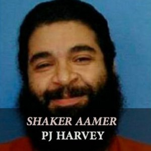 "image for article ""Shaker Aamer"" - PJ Harvey [Free Download & Soundcloud Stream]"