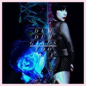 dum-dum-girls-too-true