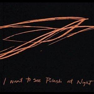 Andrew-Bird-Pulaski-At-Night