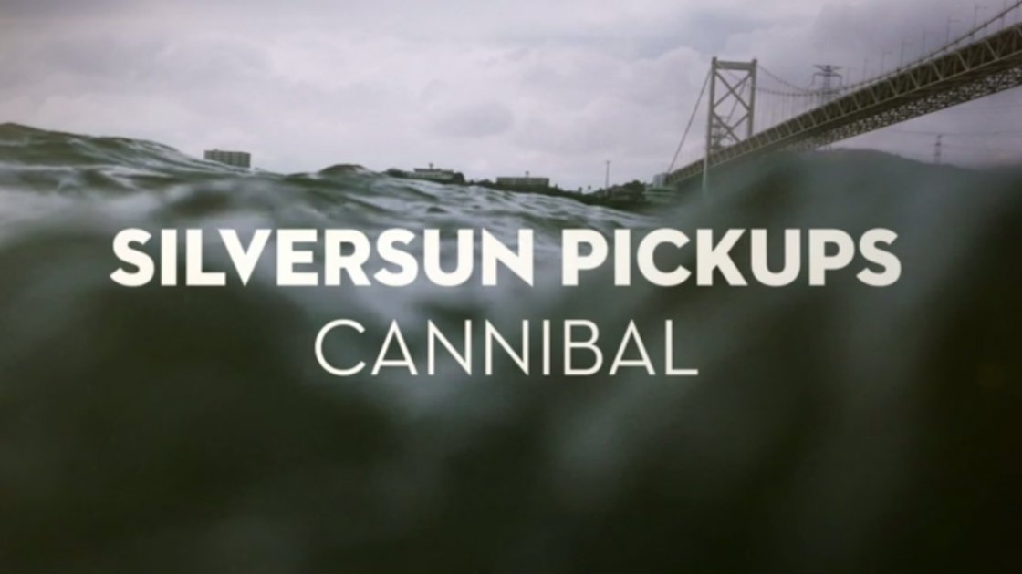 "image for article ""Cannibal"" - Silversun Pickups [YouTube Official Audio]"