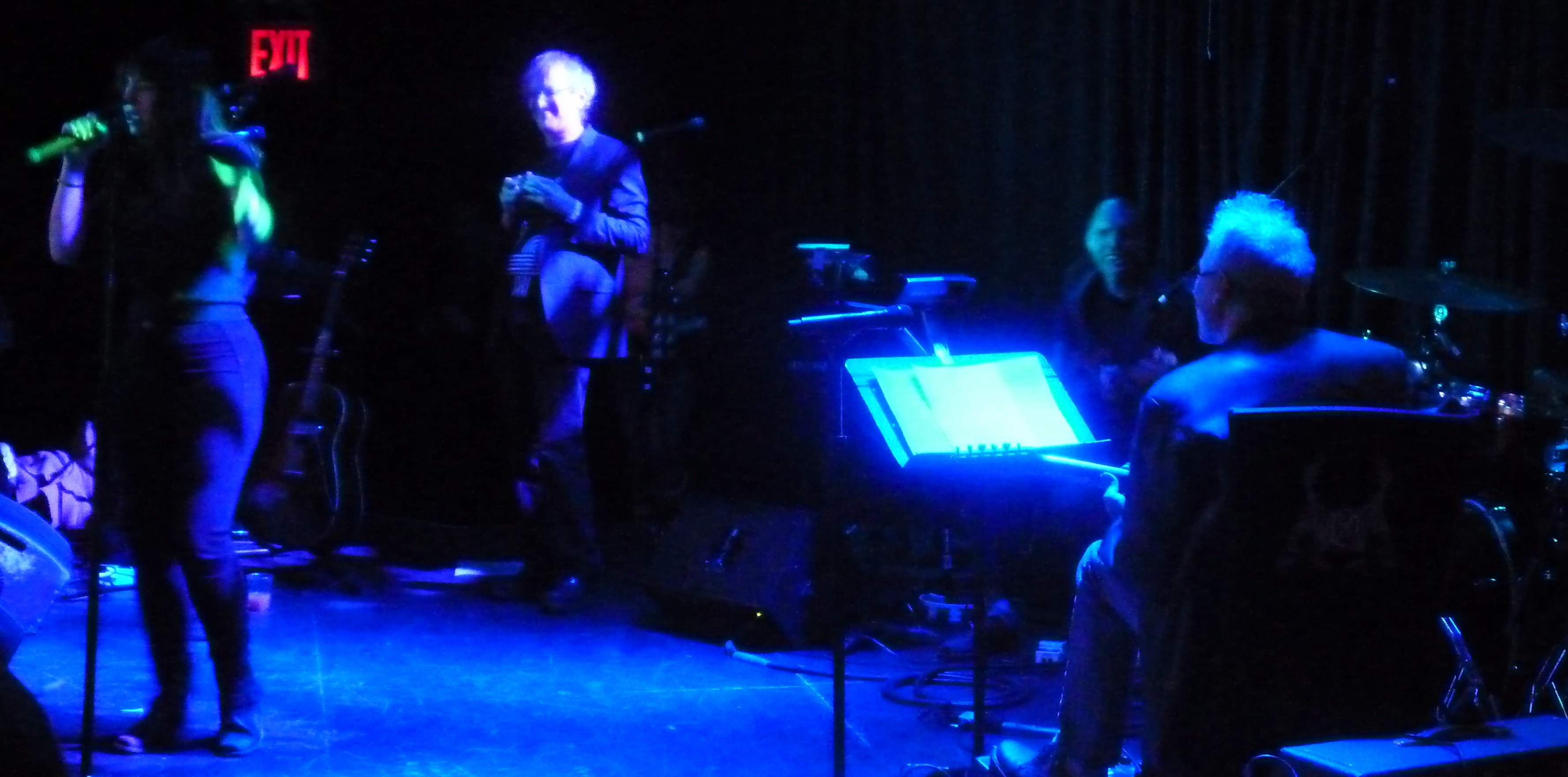 Jennifer-Charles-Marc-Ribot-Wild-Thing-Le-Poisson-Rouge-Content-Creators-Coalition-nyc-2014