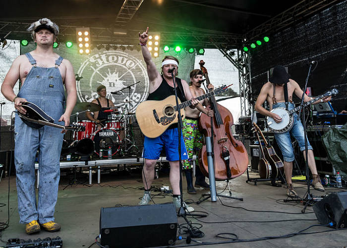 image for event Steve 'N' Seagulls
