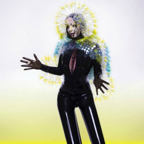 "image for article ""Vulnicura"" - Björk [Official Full Album Stream + Zumic Review]"