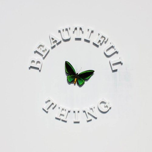 "image for article ""Beautiful Thing"" - The Stone Roses [YouTube Official Audio Stream]"