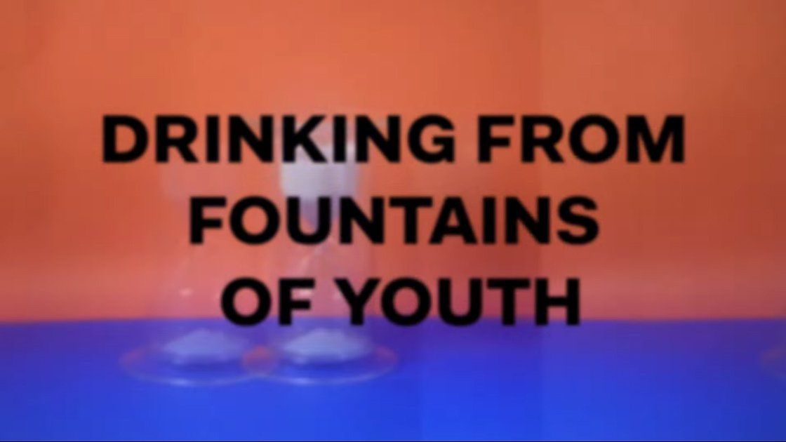 "image for article ""Fountain Of Youth"" - Local Natives [YouTube Official Lyric Video]"