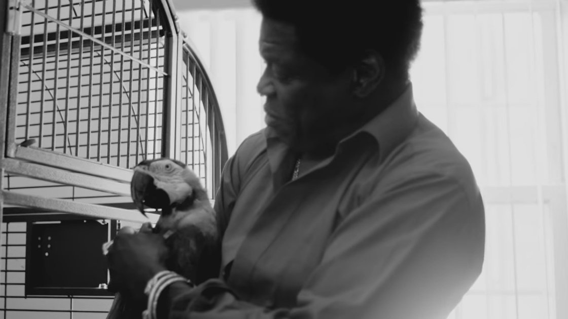 "image for article ""Good To Be Back Home"" - Charles Bradley [YouTube Music Video]"