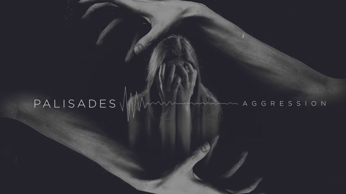 "image for article ""Aggression"" - Palisades [YouTube Audio Single]"