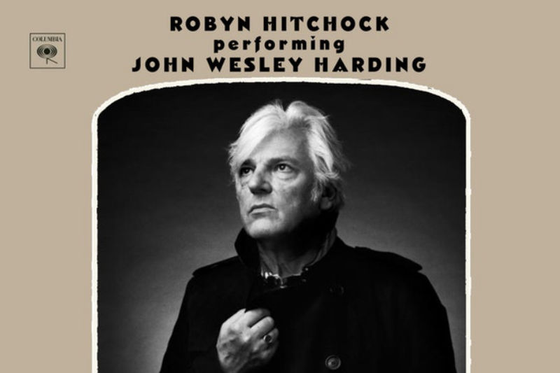 image for event Robyn Hitchcock