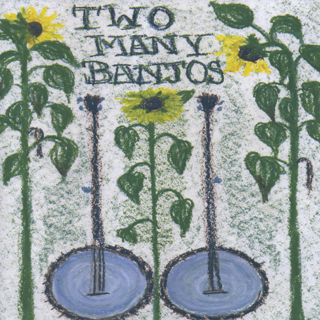 image for artist Two Many Banjos