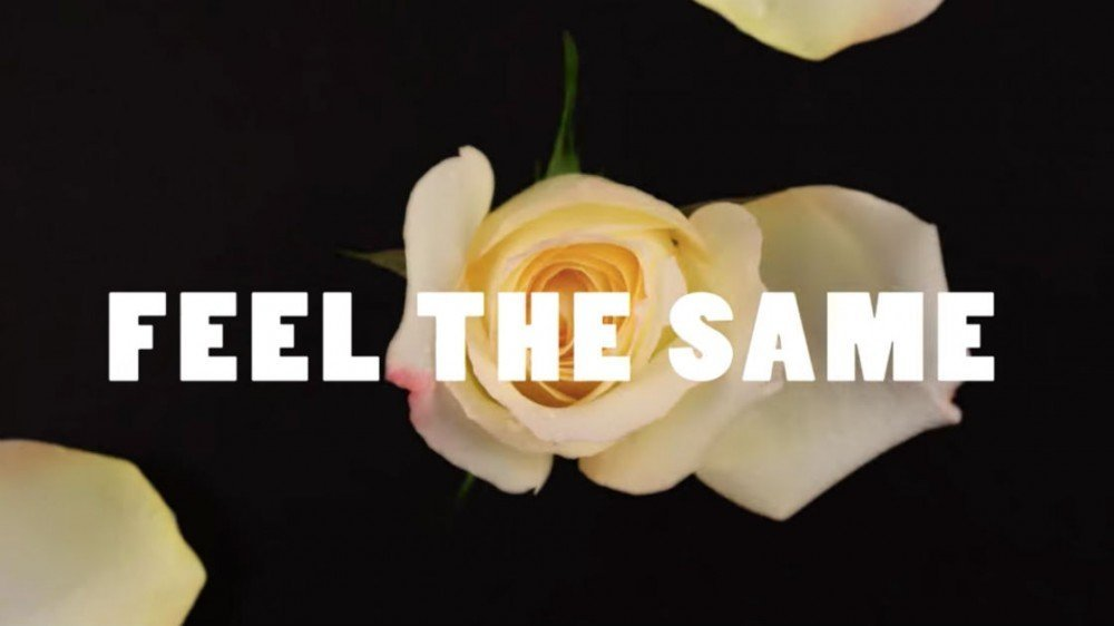"image for article ""Feel The Same"" - Bully [YouTube Music Video]"