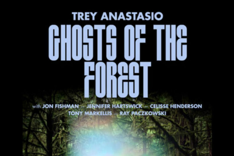 image for event Ghosts Of The Forest