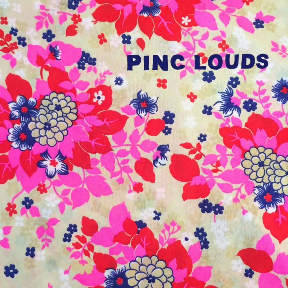 image for artist Pinc Louds