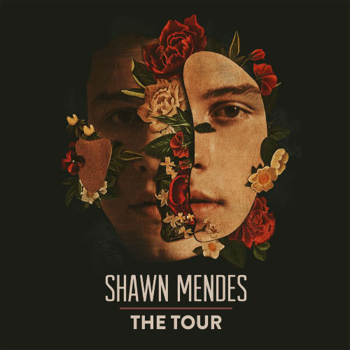 image for article Shawn Mendes Adds 2019 World Tour Dates: Ticket Presale Code & On-Sale Info